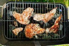 Barbecue grill with various kinds of meat Royalty Free Stock Image