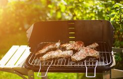 Barbecue grill with various kinds of meat Royalty Free Stock Images