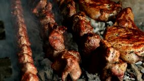 Barbecue with grilled (chicken, veal, pork) meat stock footage