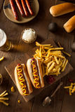 Barbecue Grilled Hot Dog Stock Images