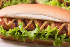 Barbecue Grilled Hot Dog. With Yellow Mustard on wooden board Royalty Free Stock Photos