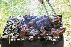 Barbecue grilled meat outdoor food Stock Images