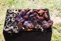 Barbecue grilled meat outdoor food meat and mushrooms on plate Stock Photography