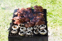 Barbecue grilled meat outdoor food meat and mushrooms on plate hands Stock Photography