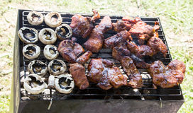 Barbecue grilled meat outdoor food meat and mushrooms Stock Photography