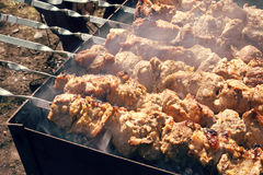 Barbecue. Grilled pork meat on skewers Stock Image