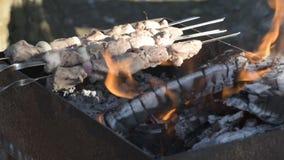 Barbecue in het bos stock video