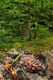 Barbecue in het hout stock foto