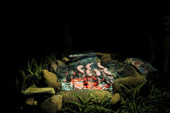 Barbecue on holidays Royalty Free Stock Photography