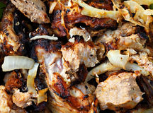 Barbecue meat with onion Stock Photography