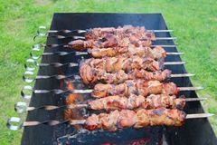 Barbecue meat on skewers. Cooking outdoors closeup Stock Images