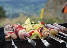 Barbecue meat, vegetables and mushrooms. Cooking outdoors Stock Photo