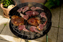 Barbecue meet on a grill. Tasty red meet on a grill during a barbecue Stock Images