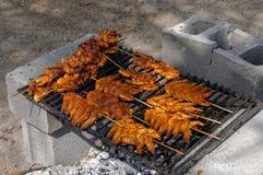 Barbecue messicano del gamberetto Immagine Stock Libera da Diritti