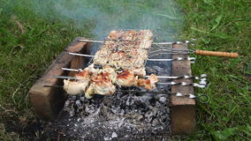 Barbecue met heerlijk geroosterd vlees stock footage