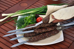 Barbecue on the nature. Shashlik outdoors, barbecues, Lala-kebab stock image