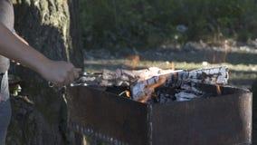 Barbecue op de aard in het bos stock footage