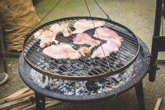 Barbecue op de grill Stock Afbeelding