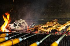 Barbecue in the open air. Shish kebab from pork on coals. royalty free stock photos