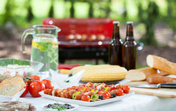 Before barbecue party Royalty Free Stock Images