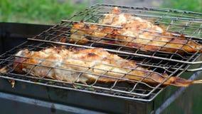 barbecue Peixes da rocha na grade vídeos de arquivo
