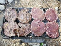 Barbecue per un picnic Fotografie Stock Libere da Diritti