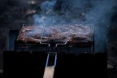 Barbecue photo. Photo with grill, sausage and other roasted meal Royalty Free Stock Photos