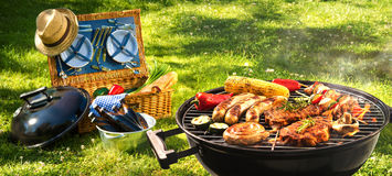 Barbecue picnic. On a meadow Royalty Free Stock Image
