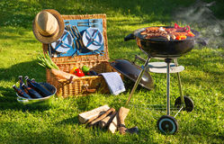 Barbecue picnic royalty free stock photo
