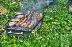 Barbecue in nature Royalty Free Stock Images