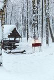Barbecue house in a winter forest Royalty Free Stock Photography