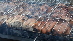 Barbecue stock video