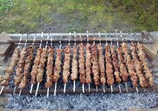 Barbecue pour un grand groupe d'amis Photos stock