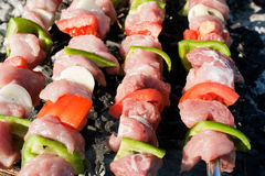 Barbecue with raw meat skewers royalty free stock photos