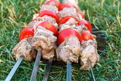 Barbecue roasted meat kebab hot grill, good snack outdoor picnic Stock Image