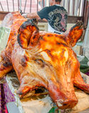 Barbecue roasted pig Royalty Free Stock Images