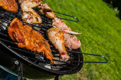Barbecue saturated composition Royalty Free Stock Images