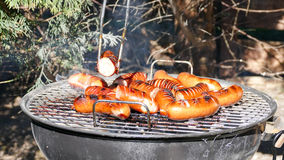 Barbecue sausage Royalty Free Stock Photo