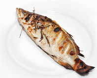Barbecue of Sea Bass Royalty Free Stock Photos