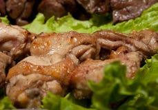 Barbecue, shish kebab from chiken and pork Stock Photos