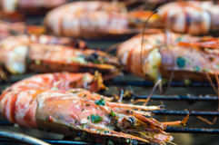Barbecue Shrimps Stock Images