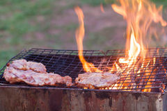 Barbecue in a simple way in wild, collect stones as grill. Outdoor charcoal grilled pork. collect stones as grill stock photo