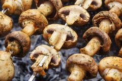 Barbecue skewers with grilled champignon mushroom kebab in a brazier Royalty Free Stock Images