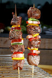 Barbecue skewers Stock Image
