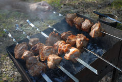 Barbecue skewers with meat on the brazier Stock Images