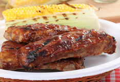 Barbecue Spareribs. Grilled barbecue spareribs and ear of corn on a plate Stock Photos