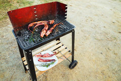 Barbecue with squid on the beach Stock Photography
