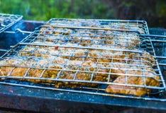 Barbecue sur le gril Photographie stock libre de droits