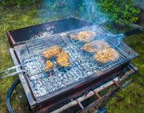 Barbecue sur le gril Photographie stock