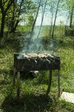 Barbecue sur le gril pendant l'été dehors, viande crue sur la brochette Images libres de droits
